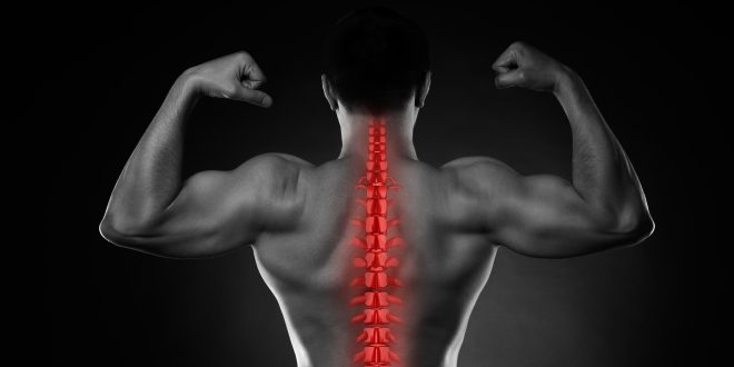 Bodybuilding and Chiropractic Care: What You Need To Know