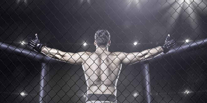 How Chiropractic Care Can Help Mixed Martial Artist?